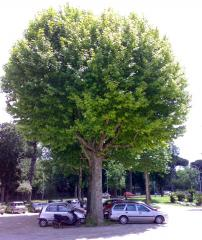 eurogarden (1)