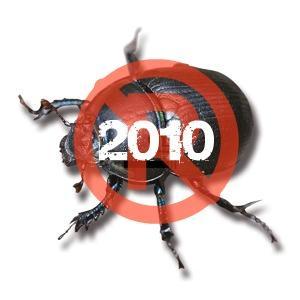 Pine-Beetle